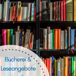Großes Bücherregal voller Bücher