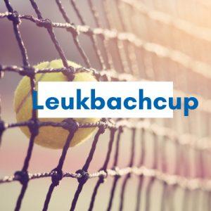 Tennis in Netz