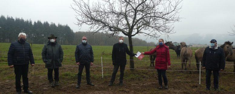 Start des Weideprojekts am ehemaligen Truppenübungsplatz